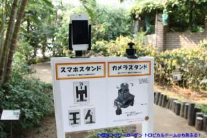 小田原フラワーガーデン トロピカルドーム温室 スマホスタンド&カメラスタンド