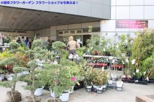 小田原フラワーガーデン フラワーショップ