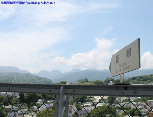 小田原城天守閣からの眺め。箱根方面