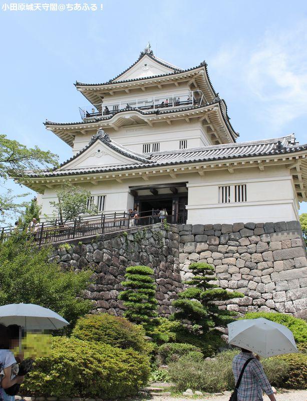 小田原城天守閣に登ってきました!