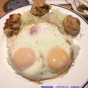 神田鐡道倶楽部 ハチクマライス
